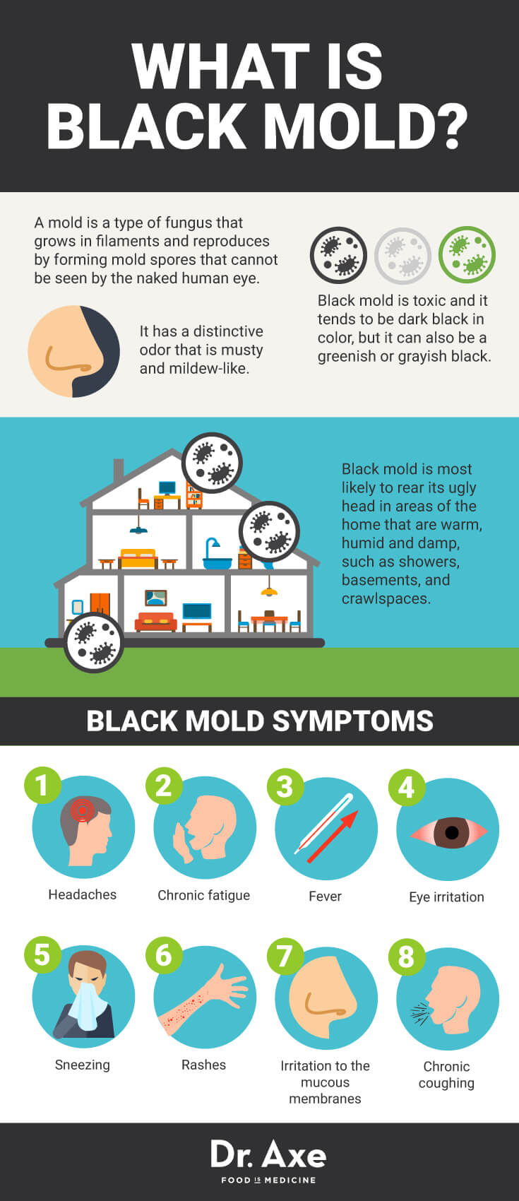 8 Signs You Need A Black Mold Detox In 2020 With Images Black Mold Exposure Mold Exposure Black Mold Symptoms