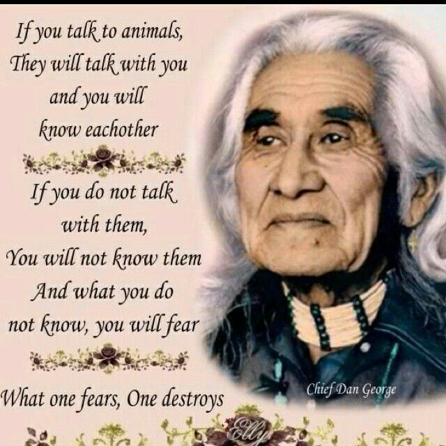 On The Other Side Of Fear Is Peace Native American Indians