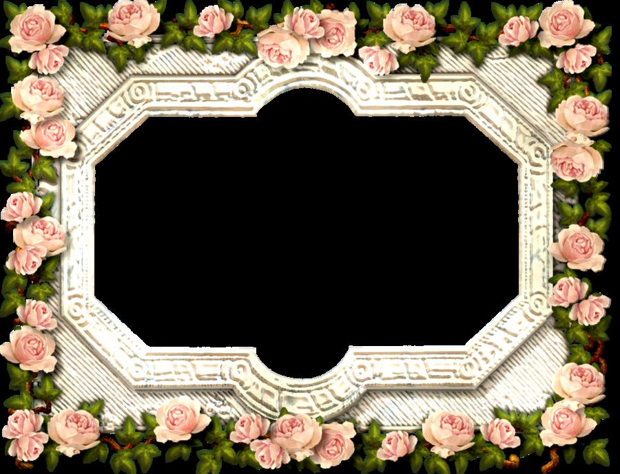 تصميم مواليد ثيمات خلفيات Cute Picsart تصاميم امي ابي Baby ادوات قلب اطفال ملصق افتار هيدر بنت Girls ورد اطا Flower Art Flower Frame Floral