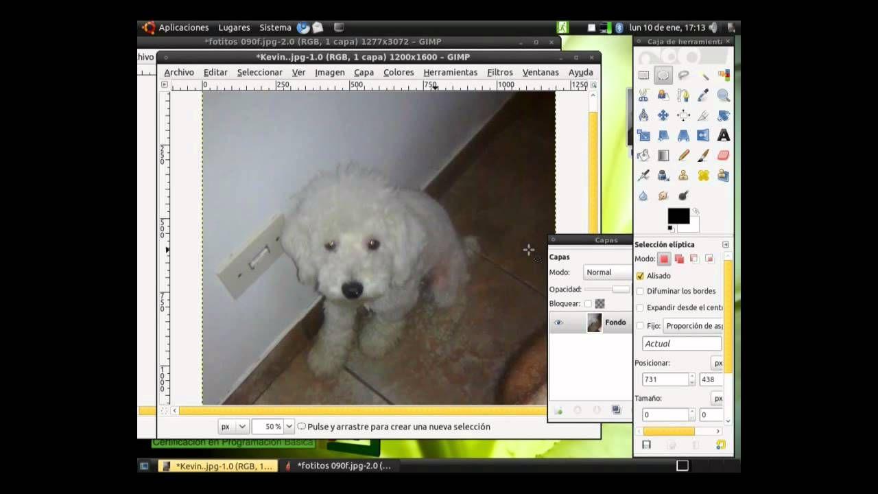 30 Video De Diseño Gráfico Diseño Grafico Gnu Linux Disenos De Unas