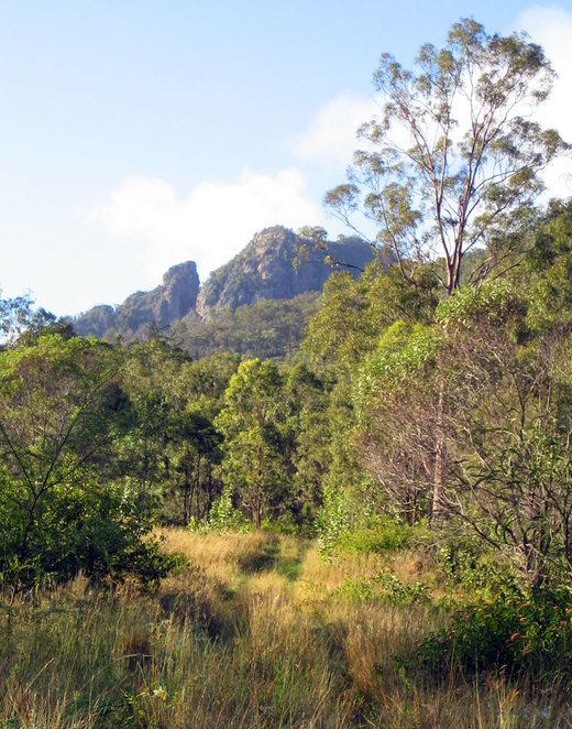 Flinders peak near Ipswich seen from the lower part of the hiking track