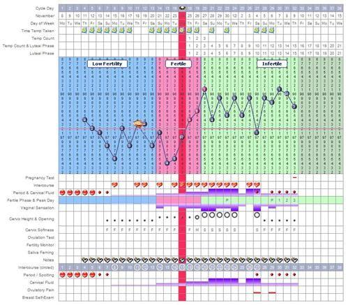 Basal Body Temperature - Getting Pregnant Woes | Basal ...