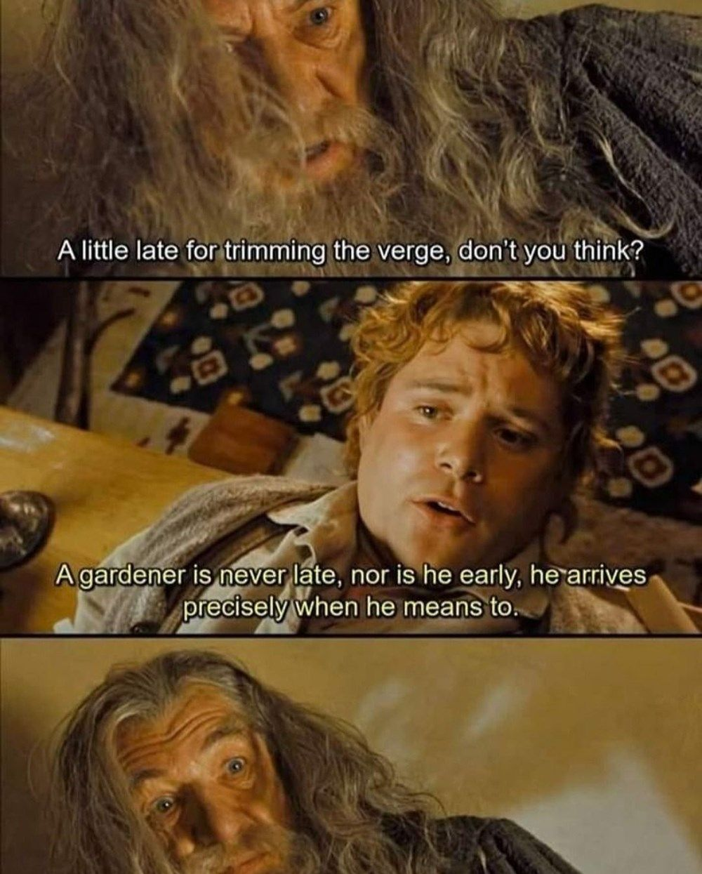 Dank Lotr Memes For People Who D Rather Be In Middle Earth Lotr Funny Lord Of The Rings Lotr