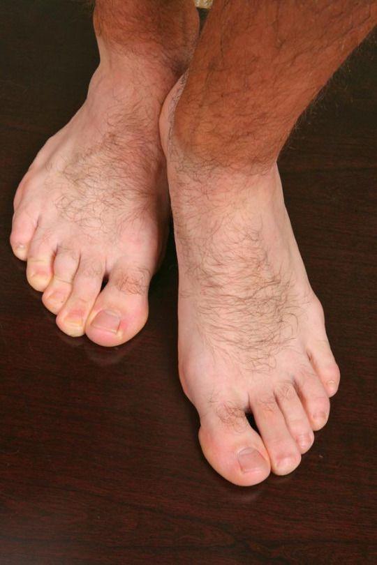 Hairy Male Feet Only  Feet  Male Feet, Barefoot Men -2105