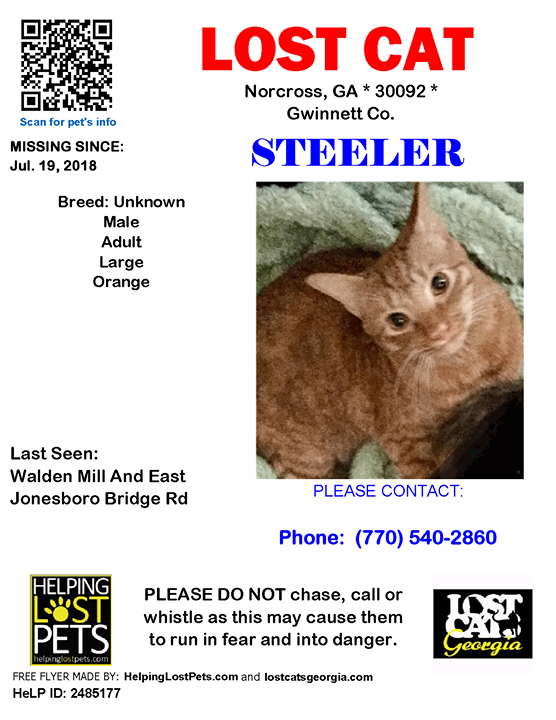 Lost Cat Norcross GA July 19 2018 Closest Intersection