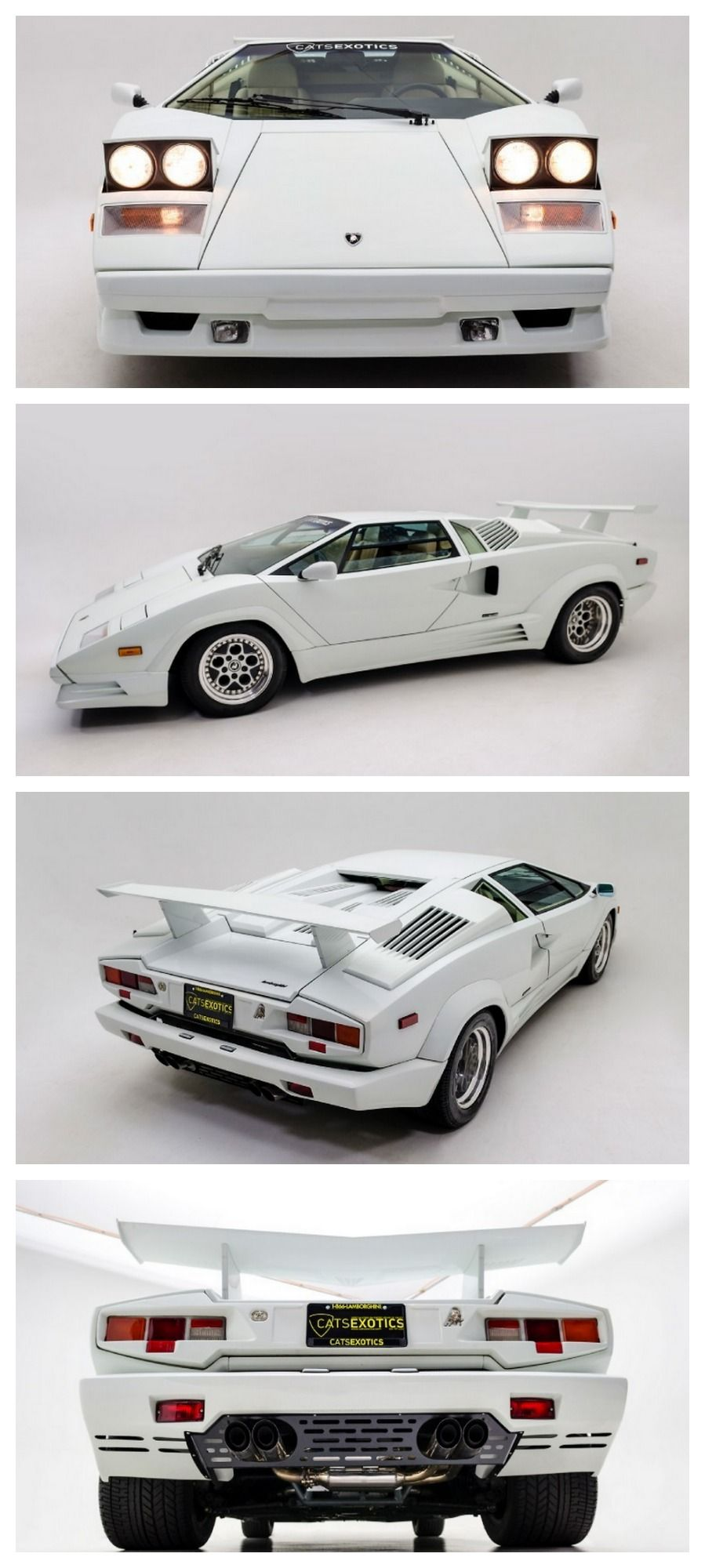 lamborghini countach 25th anniversary 25th anniversary and anniversaries. Black Bedroom Furniture Sets. Home Design Ideas
