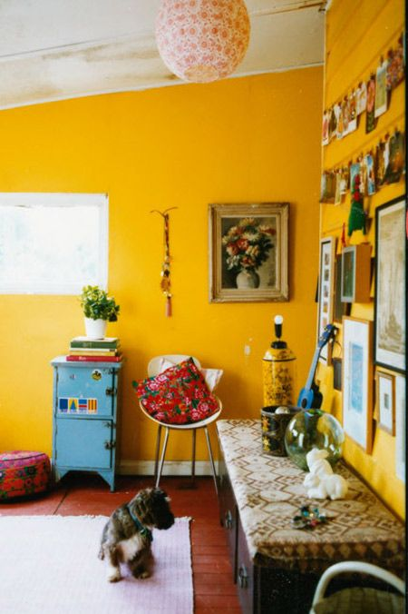 Dogs inside pinterest for Living room yellow walls