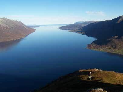 kvæfjorden