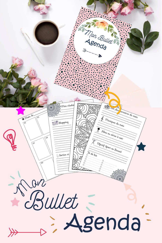 Mon Bullet Agenda 12 Mois D Organisation Bullet Journal En 2020 Bullet Journal Agenda Agenda Bullet Journal