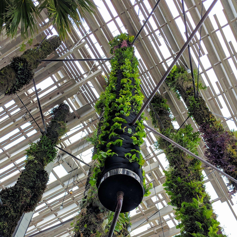Florafelt Pockets Restore Living Columns At PAMM