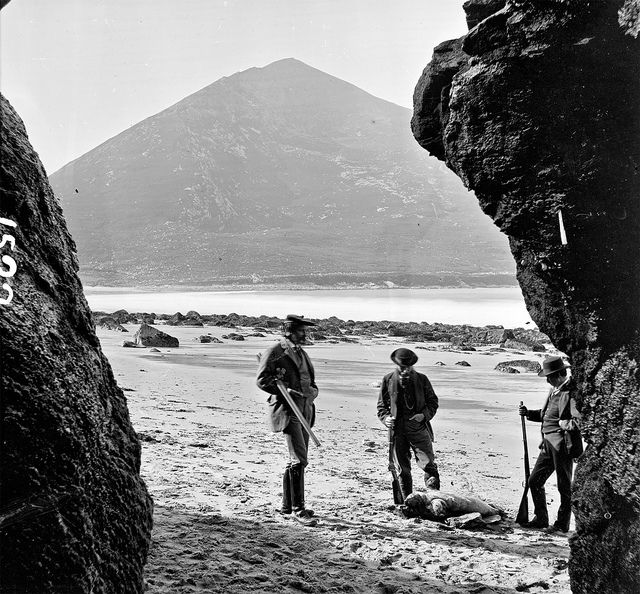 Shooting Seals on Achill Island by National Library of Ireland on The Commons, via Flickr