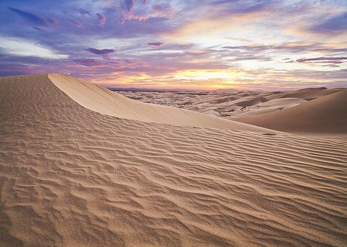 Pin On The Desert