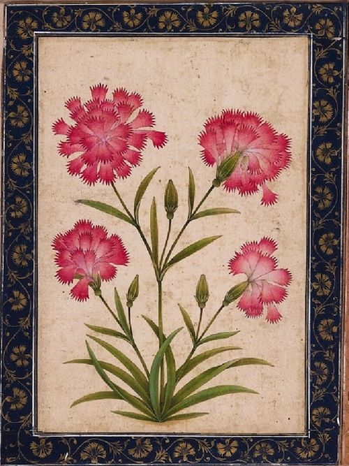 Botanical Study Of A Carnation North India Ca 1630 Mughal Miniature Paintings Flower Art Mughal Paintings
