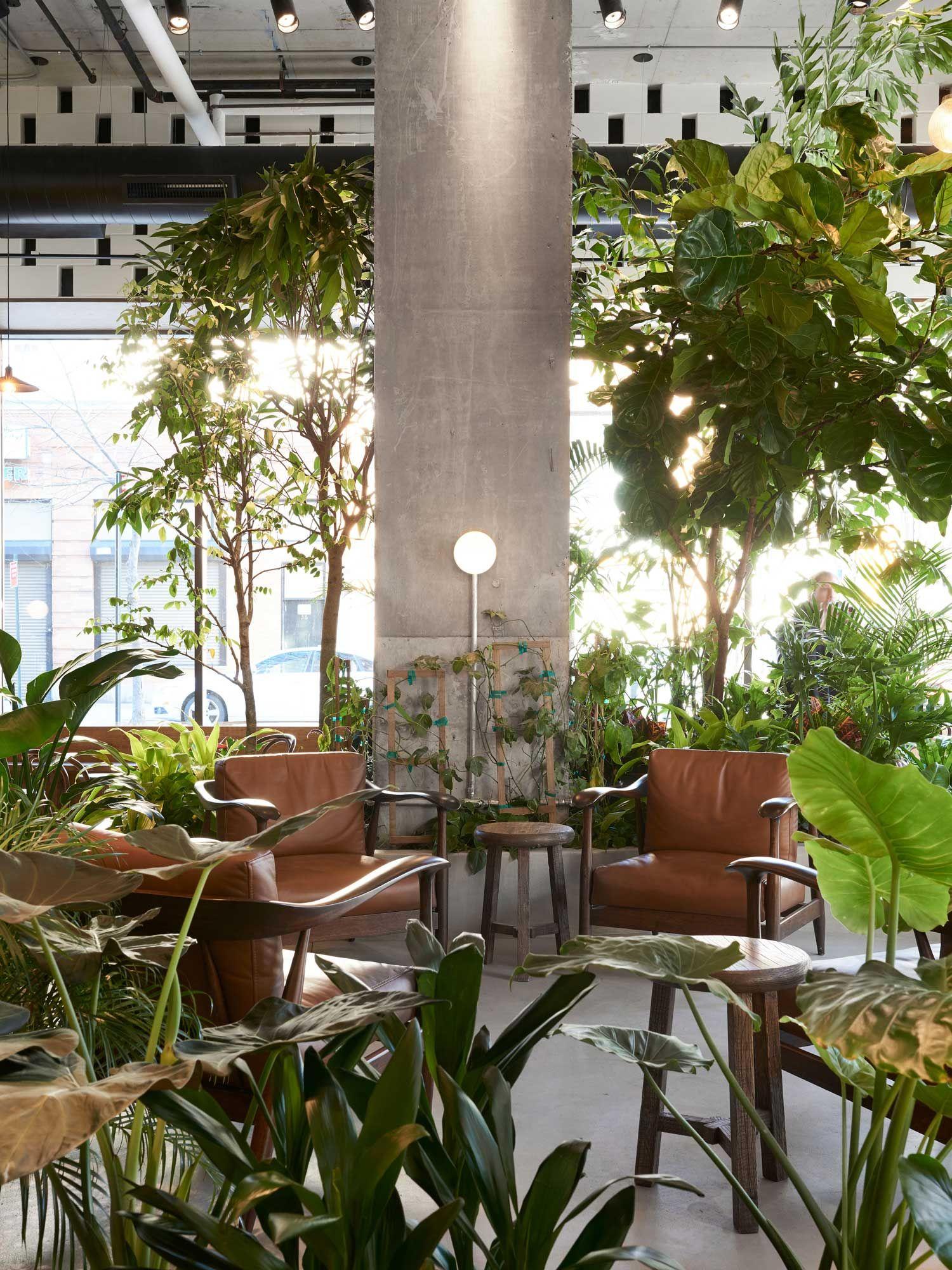 Devoción Coffee Shop in Brooklyn by LOT Office for