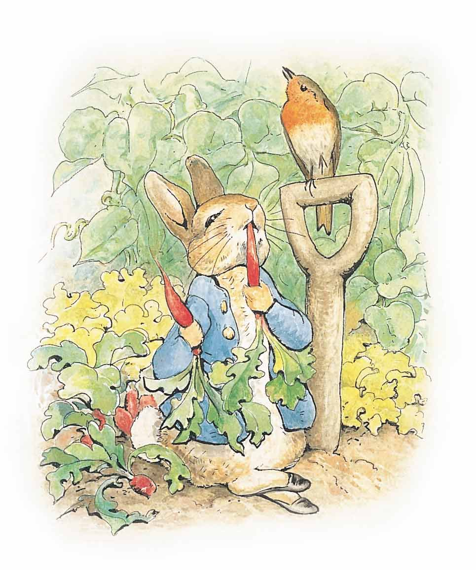 Beatrix Potter | Artists: Children\'s Illustration | Pinterest ...