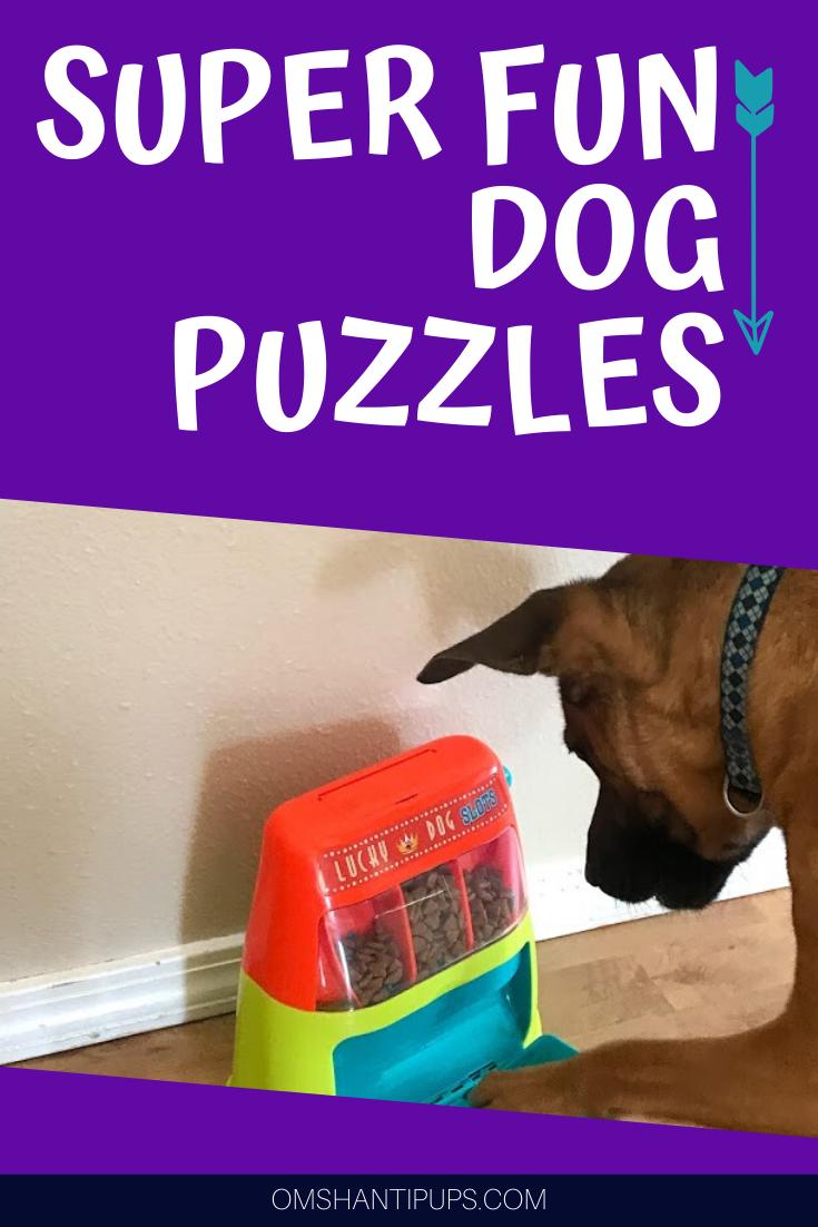 Pin On Doggy Skills