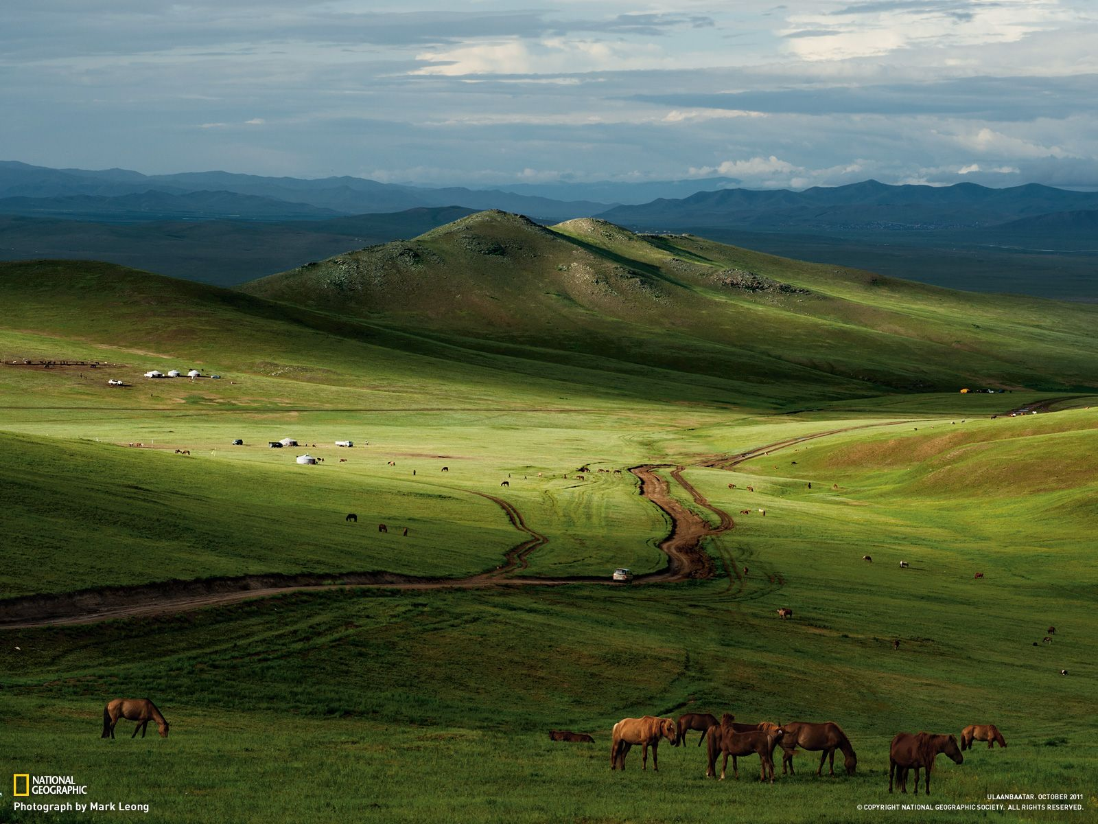 Beautiful Wallpaper Horse National Geographic - 103a67097e3f4e119095b3ce03cfd3b3  Picture_206632.jpg