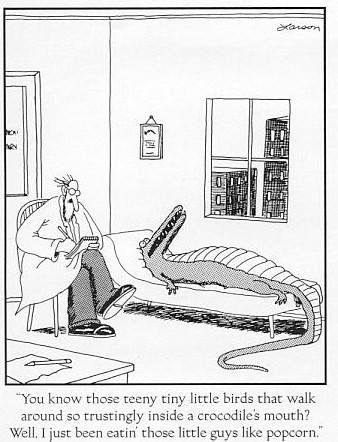 Pin by Flo iams on The far side | Gary larson cartoons, Funny ...