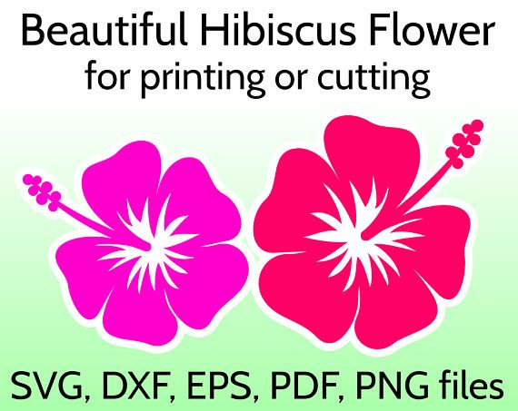 Hibiscus Flowers Hawaii Cuttable Designs With Images Flower