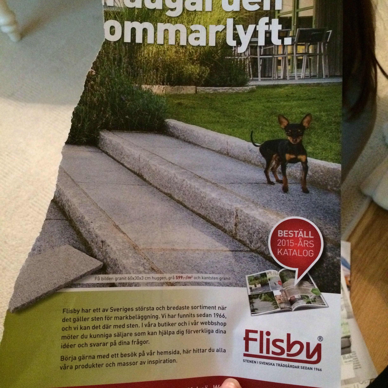 1000  images about inspiration trädgård on pinterest