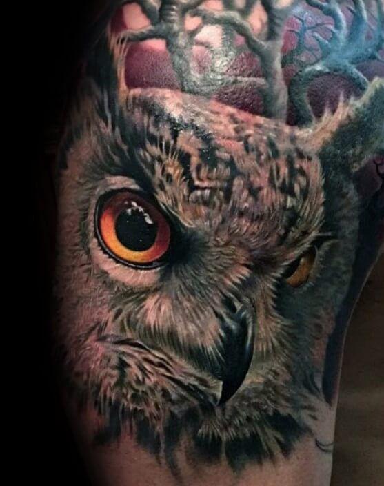 Photo of 12+ Realistic Owl Tattoo Designs | PetPress