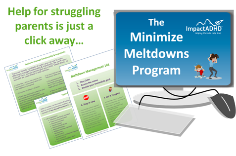 It's here! Your secret weapon to stop the chaos! Check out our Minimize Meltdowns Program.