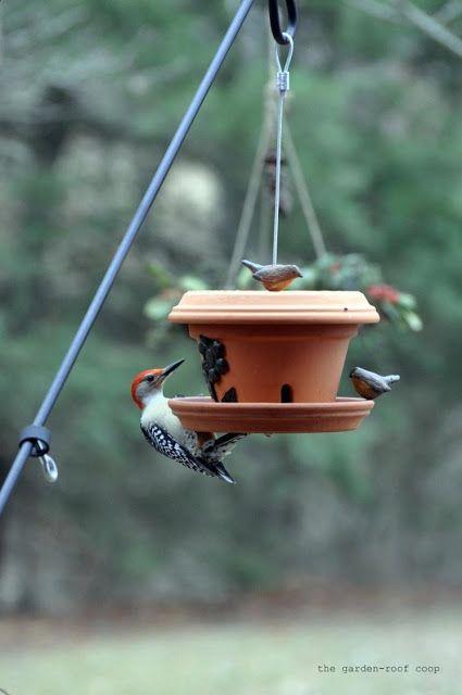 The Garden Roof Coop Diy Flowerpot Bird Feeder Bird Feeders Clay Pot Projects Homemade Bird Feeders