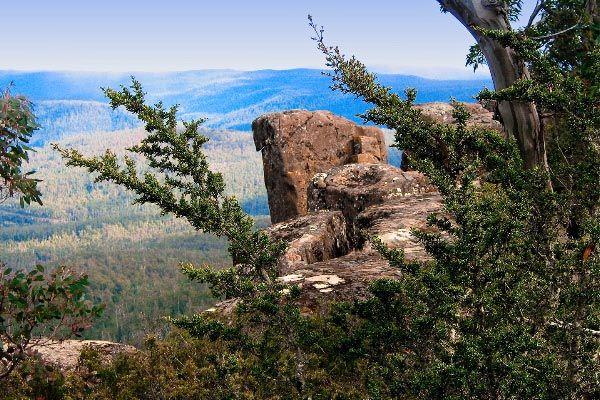 Tasmanian Wilderness World Heritage Area