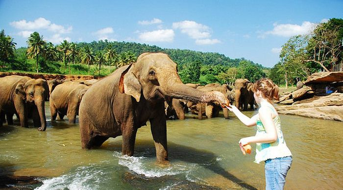 indien karta kerala Munnar is a hotspot destination of Kerala, a hill station of  indien karta kerala
