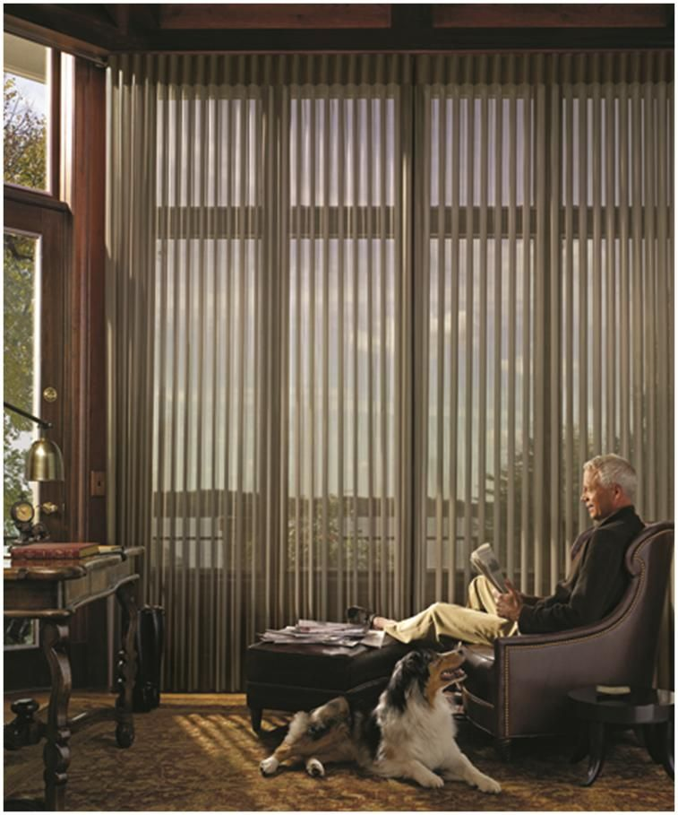 Luminette Privacy Sheers By Hunter Douglas Patio Door Coverings
