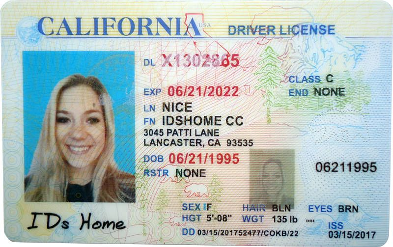 Image result for california drivers license template