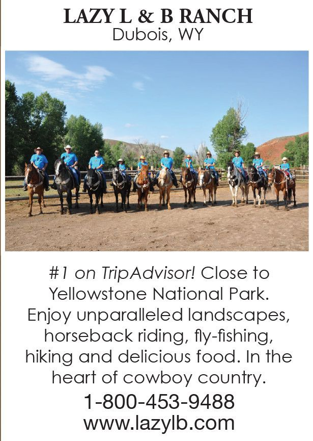 Arizona Dude Ranch Vacation for family fun and adult