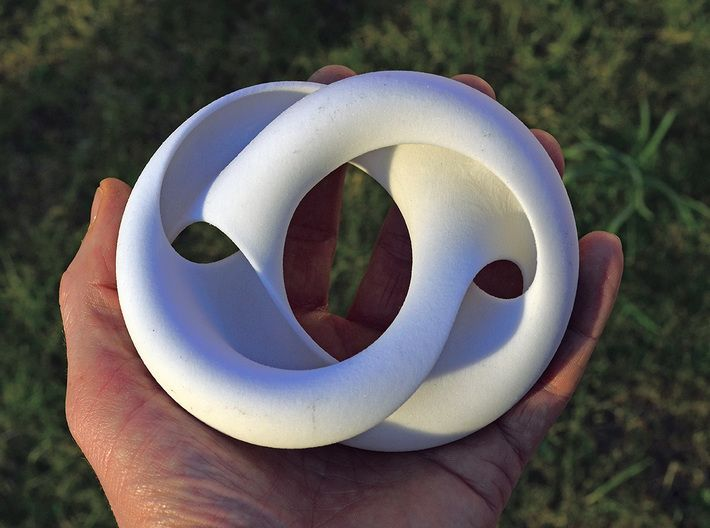 Crossing Torus I 3d printed