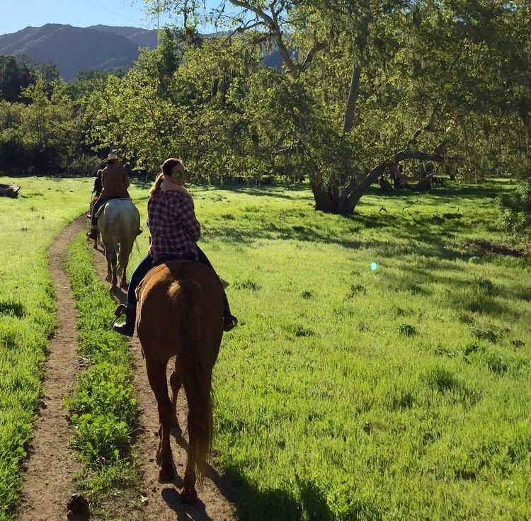 Where to Stay in the Santa Ynez Valley Alisal Guest Ranch
