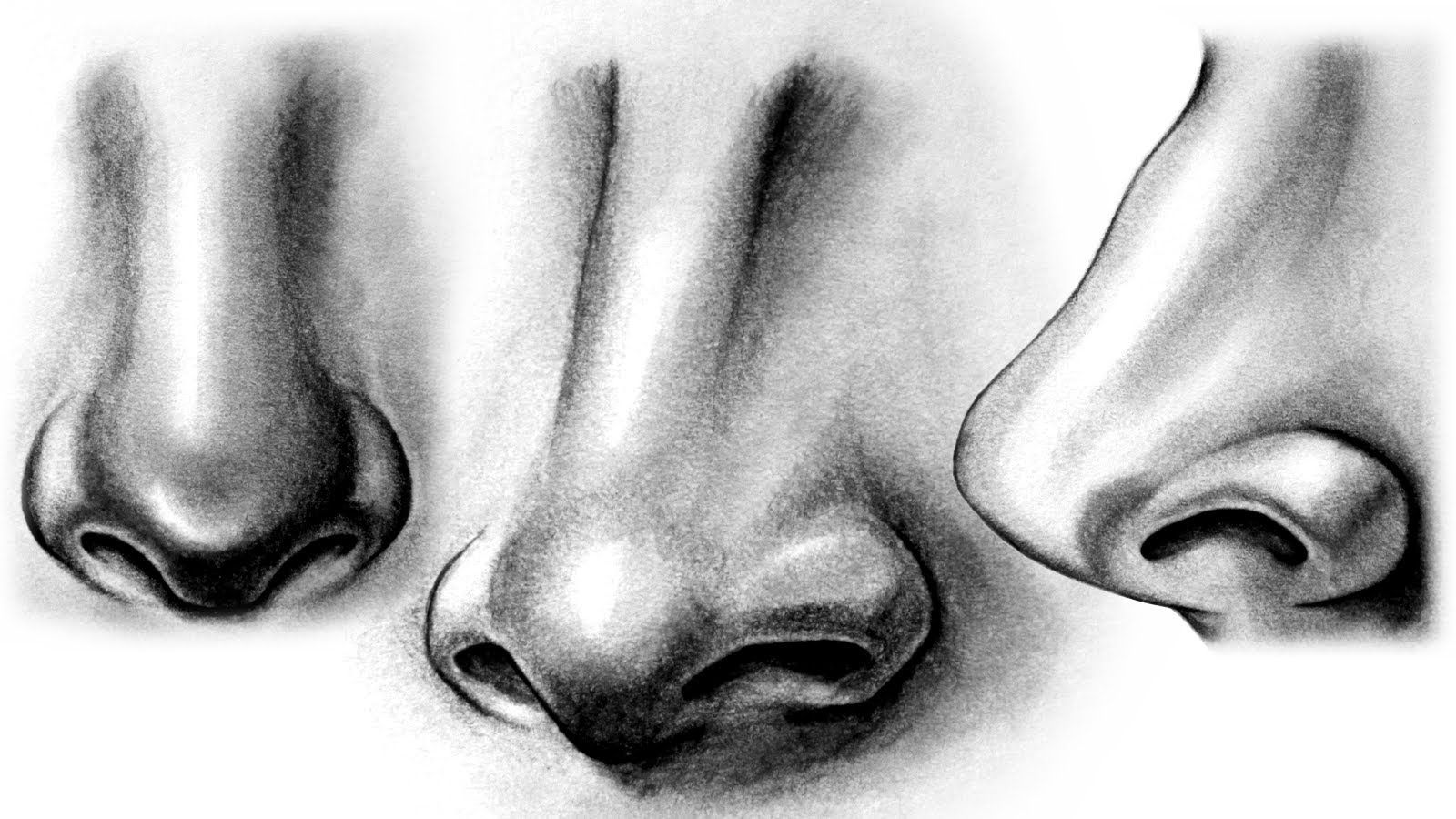 Realistic Nose Black And White