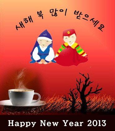 Happy New Year! 새해 복 많이 받으세요! (Sae Hae Bok Mani Ba Deu Se Yo!)
