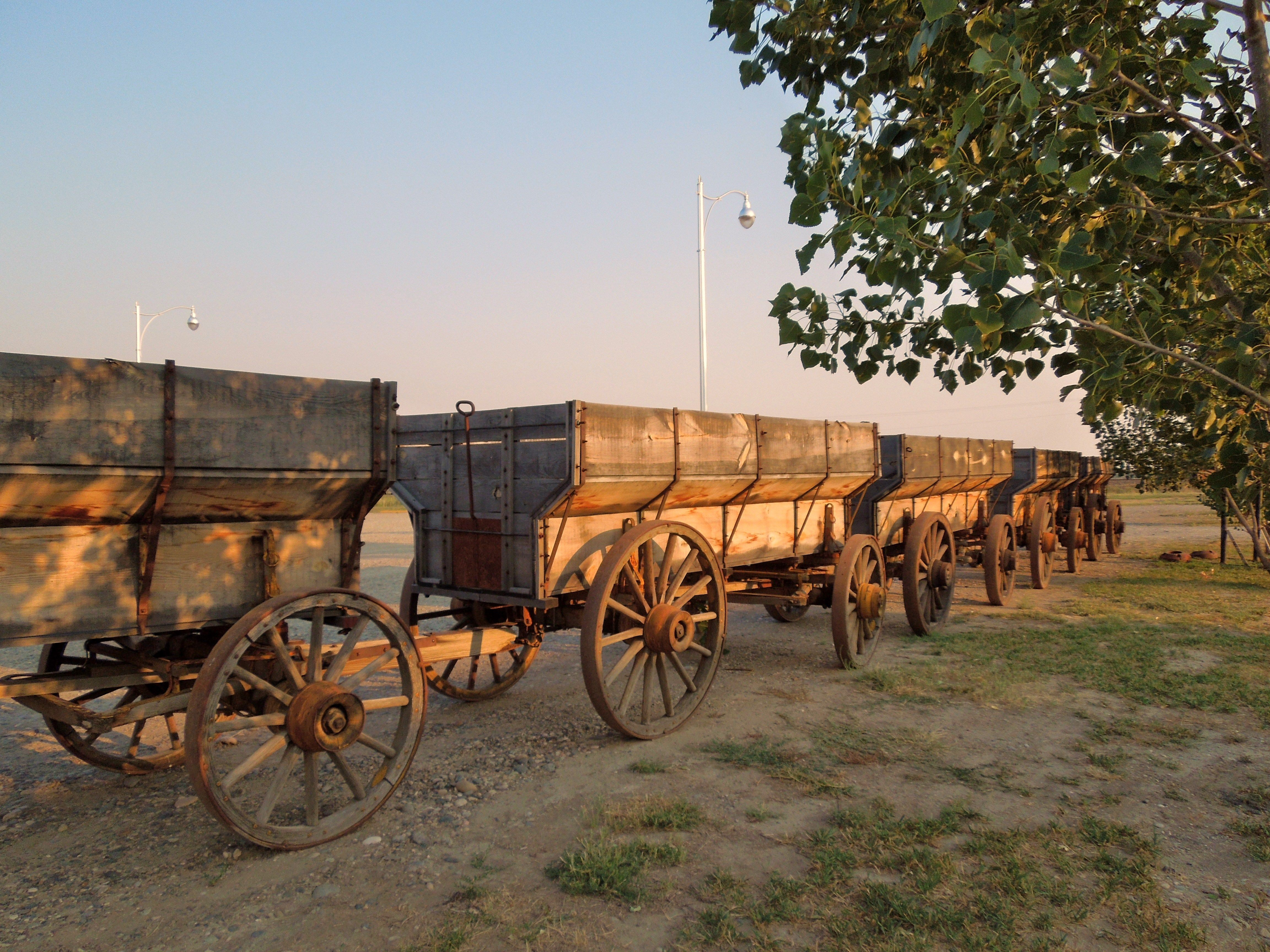 Wagon Train Resting After A Lot Of Miles