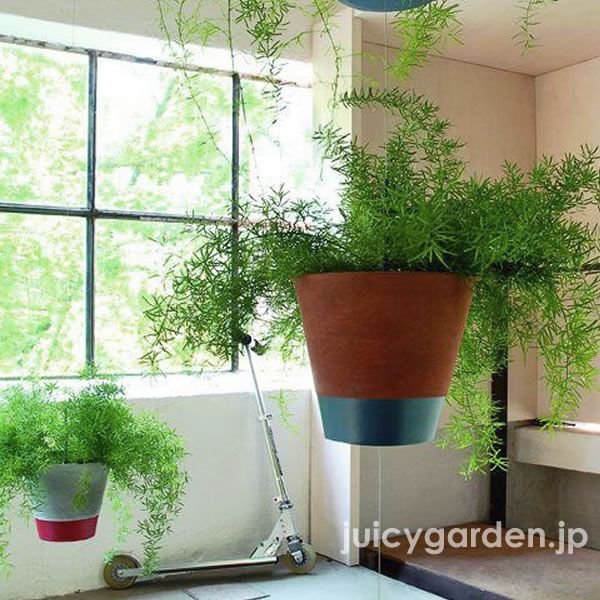 観葉植物 鉢 プランター ガーデンルーム ポット 垂直型ガーデン