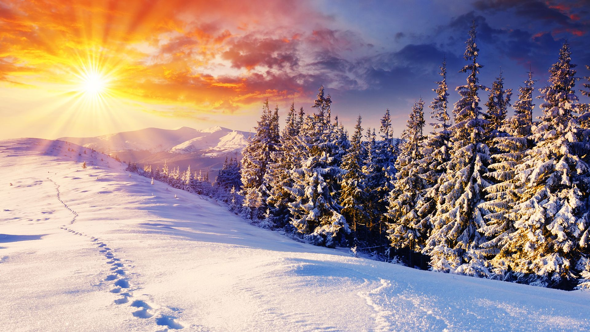winter wallpapers get free top quality winter wallpapers for your desktop pc background ios