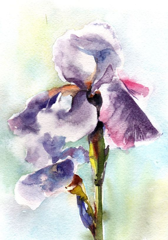 Blue Purple Irises Original Watercolor Painting Flowers Watercolour Art One of a Kind Art Watercolour Art Piece  Scale: 9x12 Medium: top branded