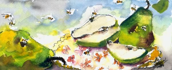 Pears and Bees - Poires et les Abeilles Watercolor and Ink