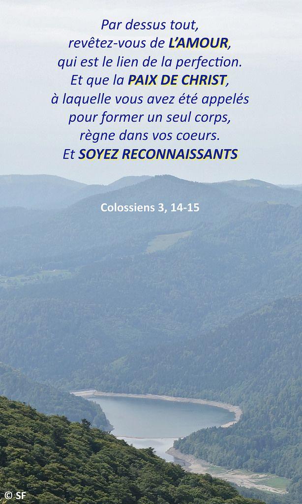 14 idées de COLOSSIANS / COLOSSIENS | palace france, dieu le père, christ