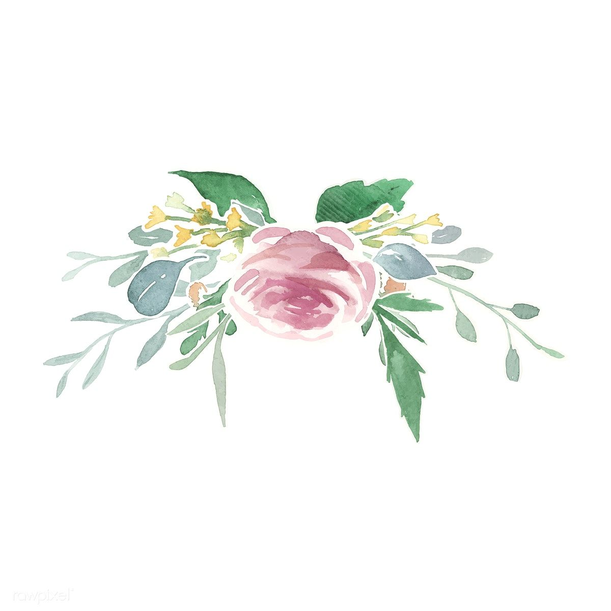 Vintage Floral Ornaments Free Image By Rawpixel Com Flower Illustration Vintage Floral Backgrounds Floral Watercolor