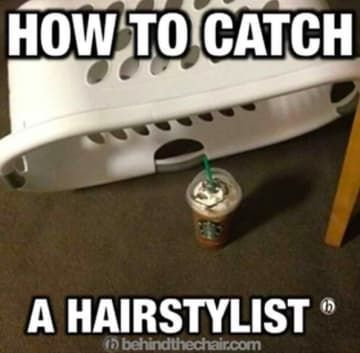 27 Memes That Will Make Every Hairstylist Actually LOL #hairstylistquotes 27 Memes That Will Make Every Hairstylist Actually LOL #hairstylistquotes 27 Memes That Will Make Every Hairstylist Actually LOL #hairstylistquotes 27 Memes That Will Make Every Hairstylist Actually LOL #hairstylistquotes 27 Memes That Will Make Every Hairstylist Actually LOL #hairstylistquotes 27 Memes That Will Make Every Hairstylist Actually LOL #hairstylistquotes 27 Memes That Will Make Every Hairstylist Actually LOL # #hairstylistquotes