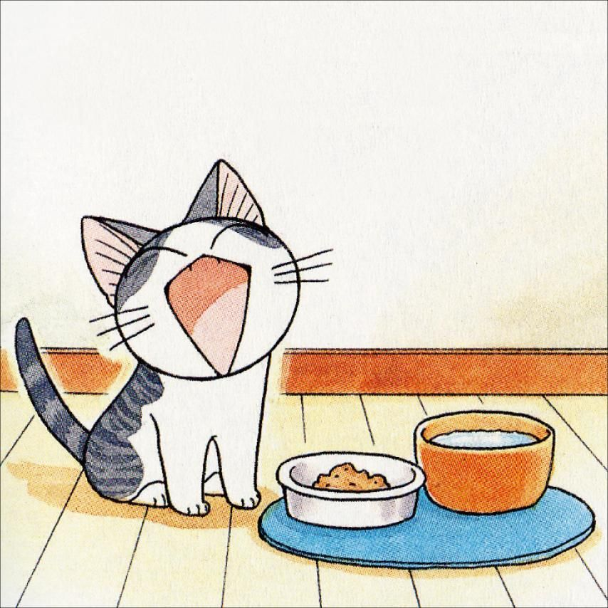 Milk and food makes one happy Chi ... Chi's sweet home, Chii's Sweet Home, Chi, Chi's Sweet Home, Chii, cat, Chi une vie de chat
