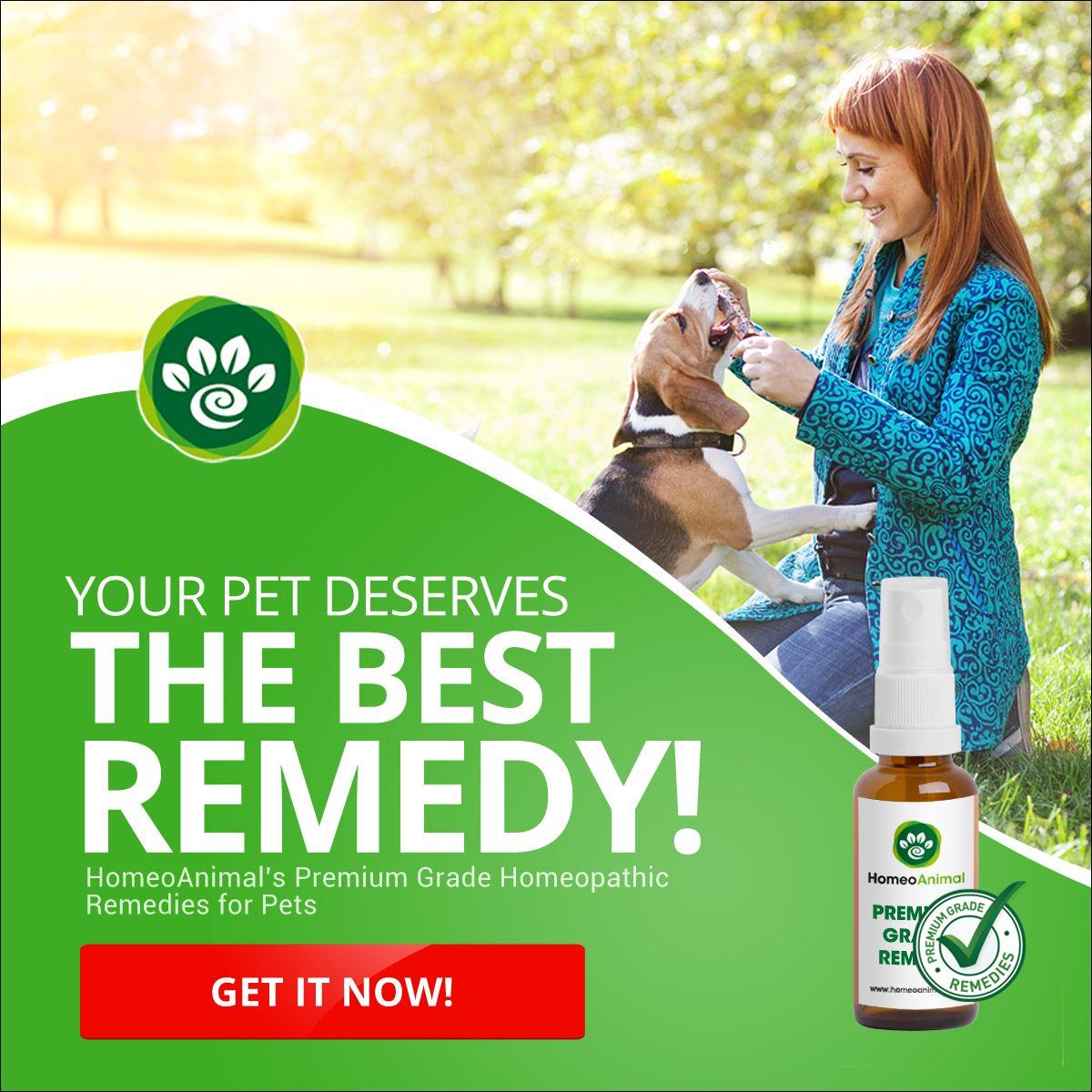 Your Pet Deserves the BEST NATURAL REMEDIES Premium