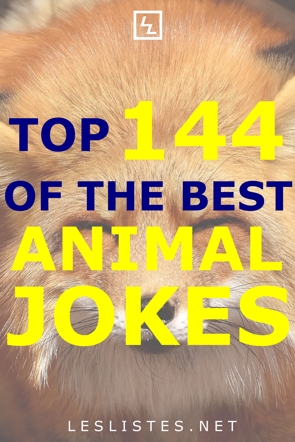 Animals can be very funny. In addition, animals make some