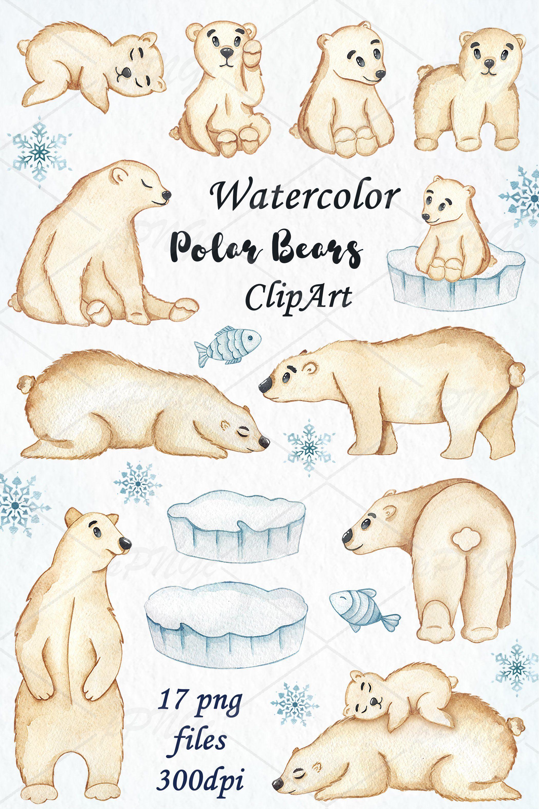 Watercolor Polar Bears Clipart By Passionpngcreation On Creativemarket Bear Clipart Polar Bear Bear