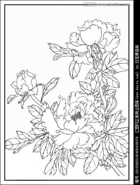 image result for peonies coloring page 構圖 pinterest peony