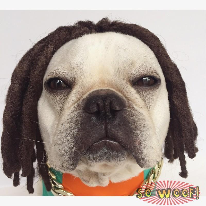 Crazy Shop Funny Pet Dog Cat Blonde Short Wigs Bobo Syethetic Hair